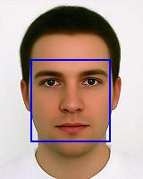Face SDK, Face Recognition SDK, Face Forensics, Partial Face Recognition